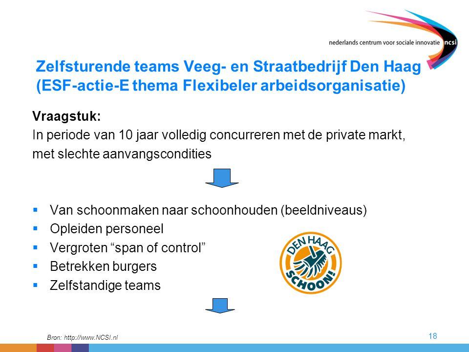 Zelfsturende teams Veeg- en Straatbedrijf Den Haag (ESF-actie-E thema Flexibeler arbeidsorganisatie)