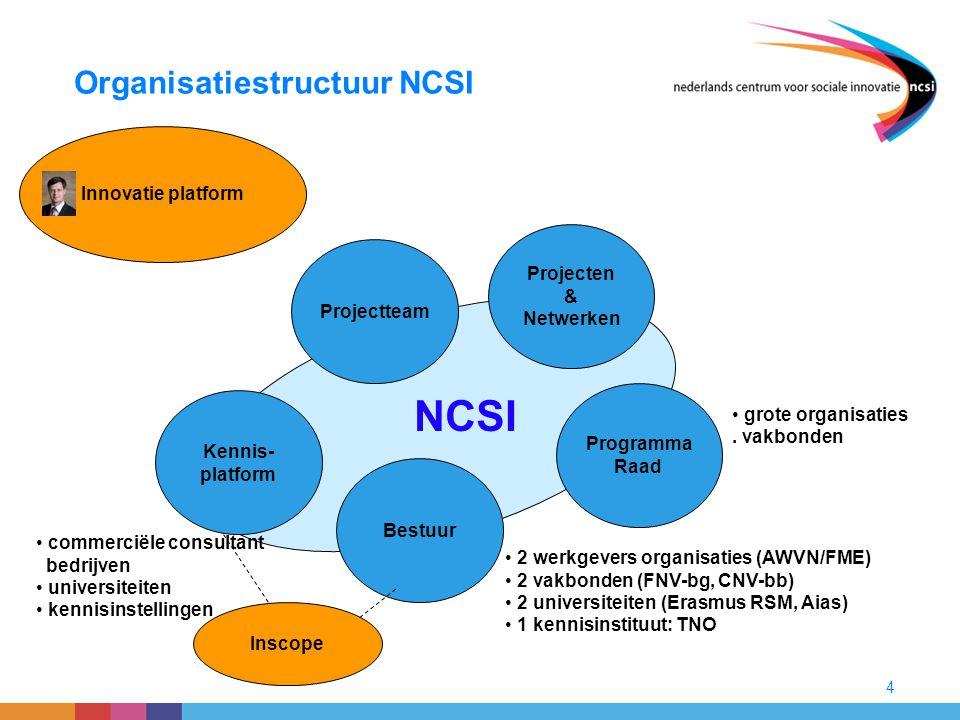 Organisatiestructuur NCSI