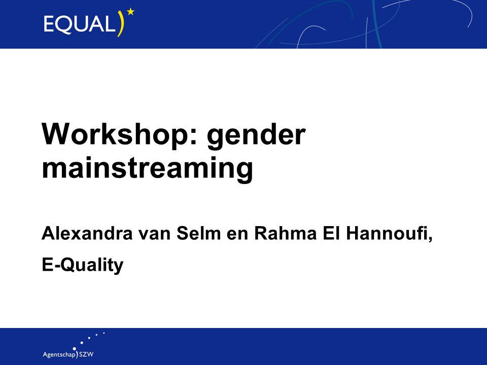 Workshop: gender mainstreaming