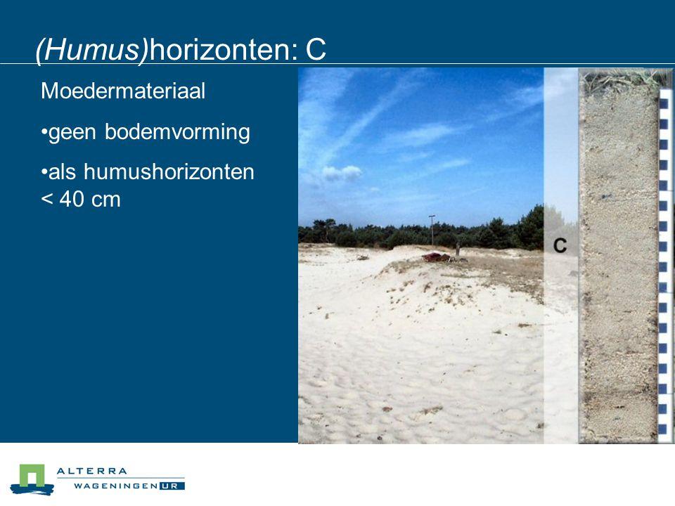 (Humus)horizonten: C Moedermateriaal geen bodemvorming