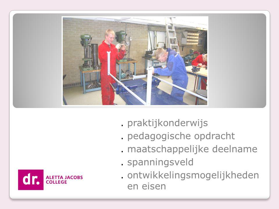 . pedagogische opdracht . maatschappelijke deelname . spanningsveld