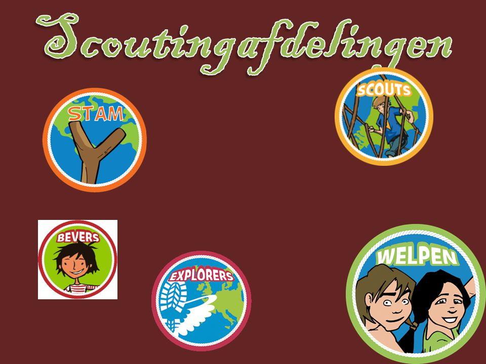 Scoutingafdelingen