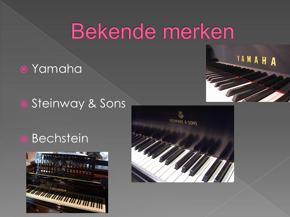 Bekende merken Yamaha Steinway & Sons Bechstein