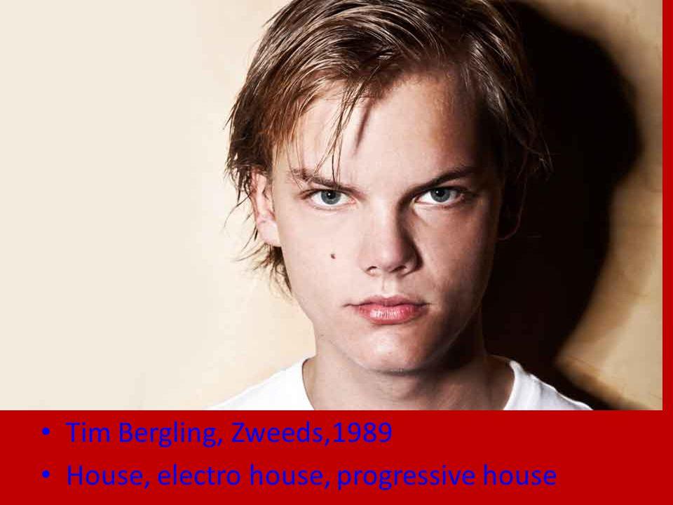 Tim Bergling, Zweeds,1989 House, electro house, progressive house
