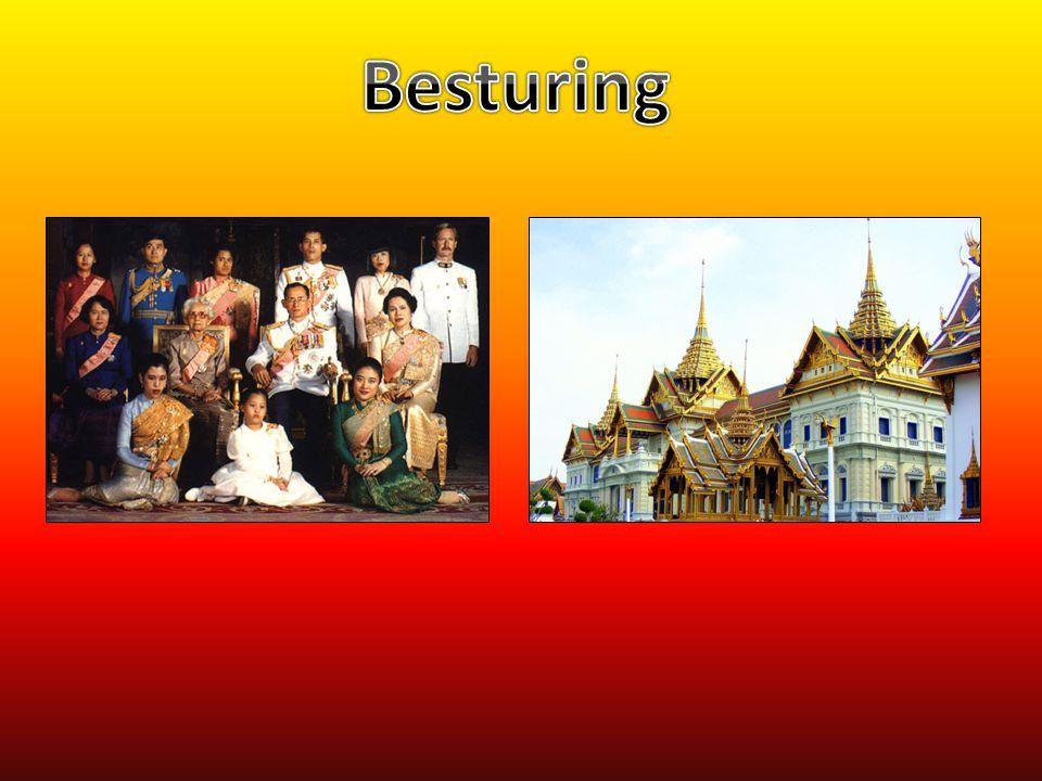 Besturing