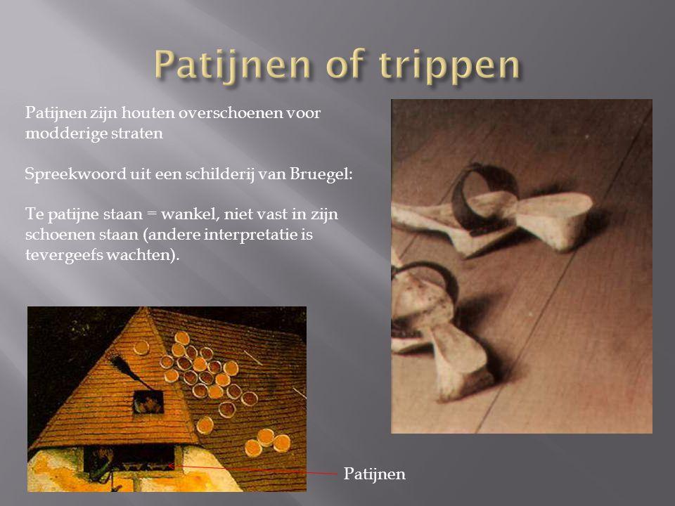 Patijnen of trippen Patijnen zijn houten overschoenen voor modderige straten. Spreekwoord uit een schilderij van Bruegel: