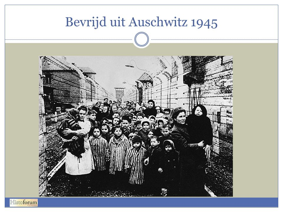 Bevrijd uit Auschwitz 1945