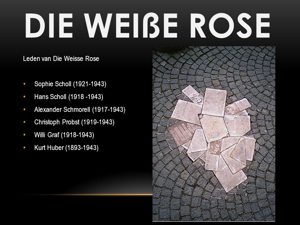 die weisse rose Find this pin and more on die weisse rose by gahmusa posts about sophie scholl on fastapo sophie scholl (9 may 1921 – 22 february 1943) was a german student, active within the weisse rose non-violent resistance group in nazi germany.