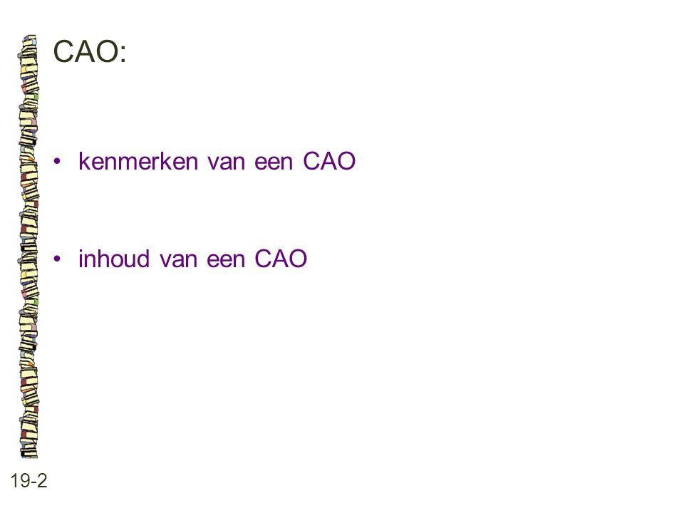 CAO: • kenmerken van een CAO • inhoud van een CAO 19-2