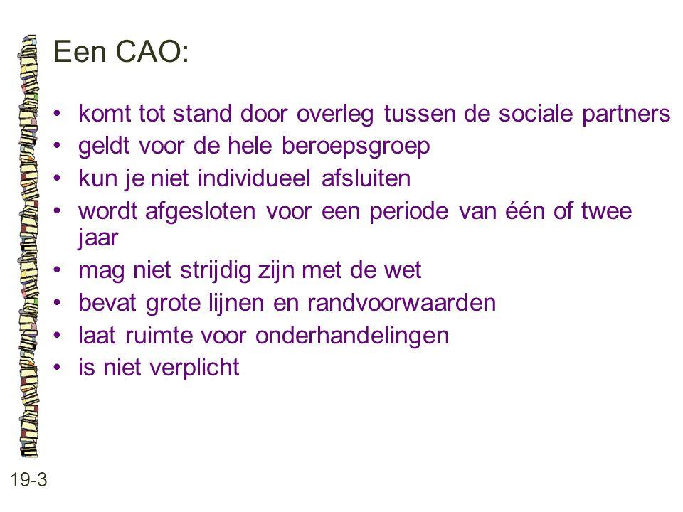Een CAO: • komt tot stand door overleg tussen de sociale partners