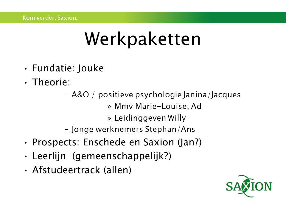 Werkpaketten Fundatie: Jouke Theorie: