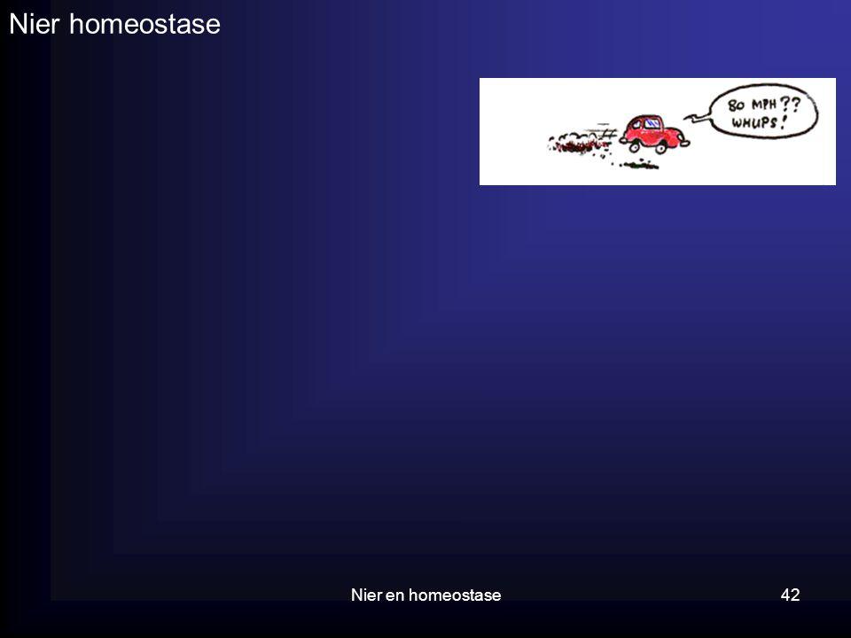 Nier homeostase Nier en homeostase