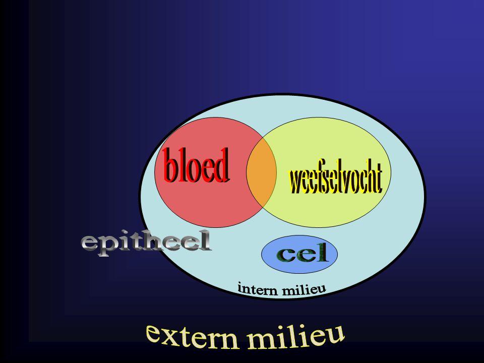 bloed weefselvocht epitheel cel intern milieu extern milieu