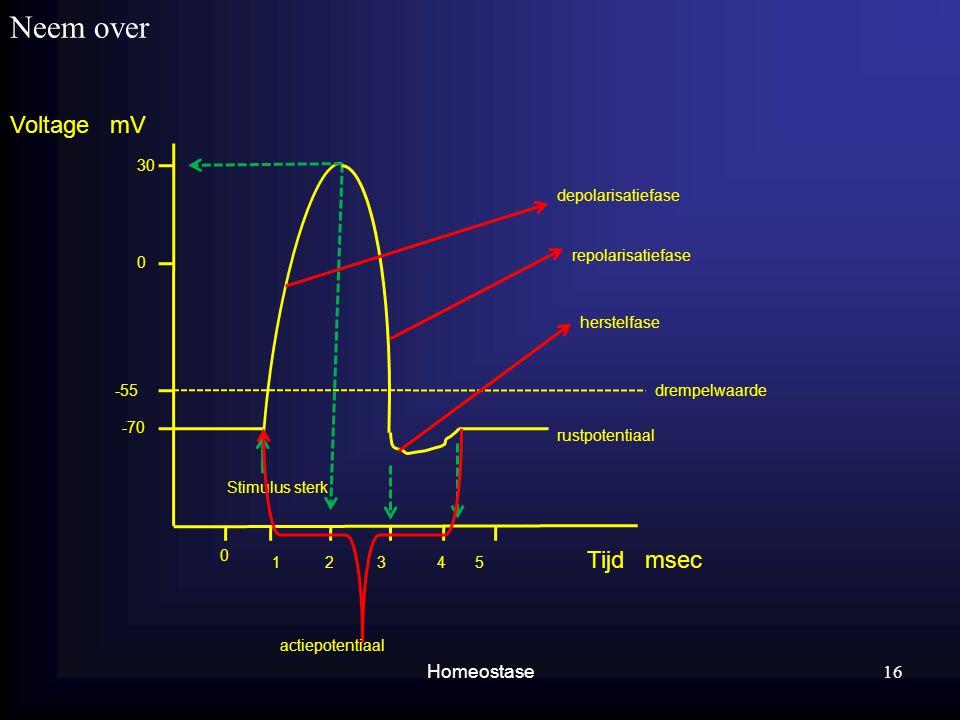 Neem over Voltage mV Tijd msec Homeostase 30 depolarisatiefase