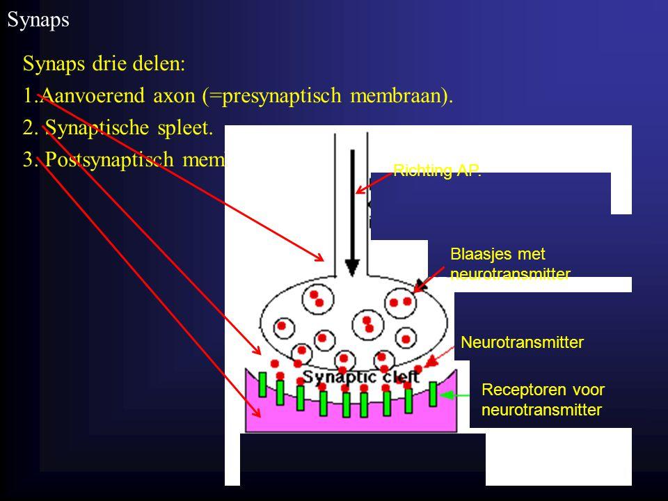 1.Aanvoerend axon (=presynaptisch membraan). 2. Synaptische spleet.