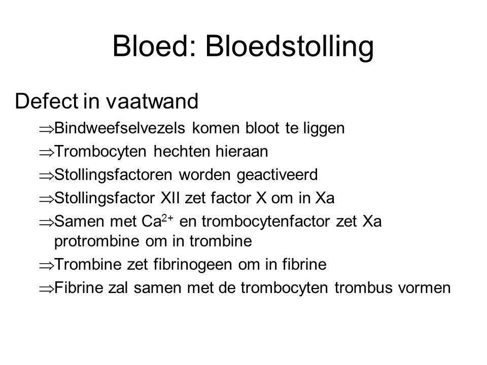 Bloed: Bloedstolling Defect in vaatwand