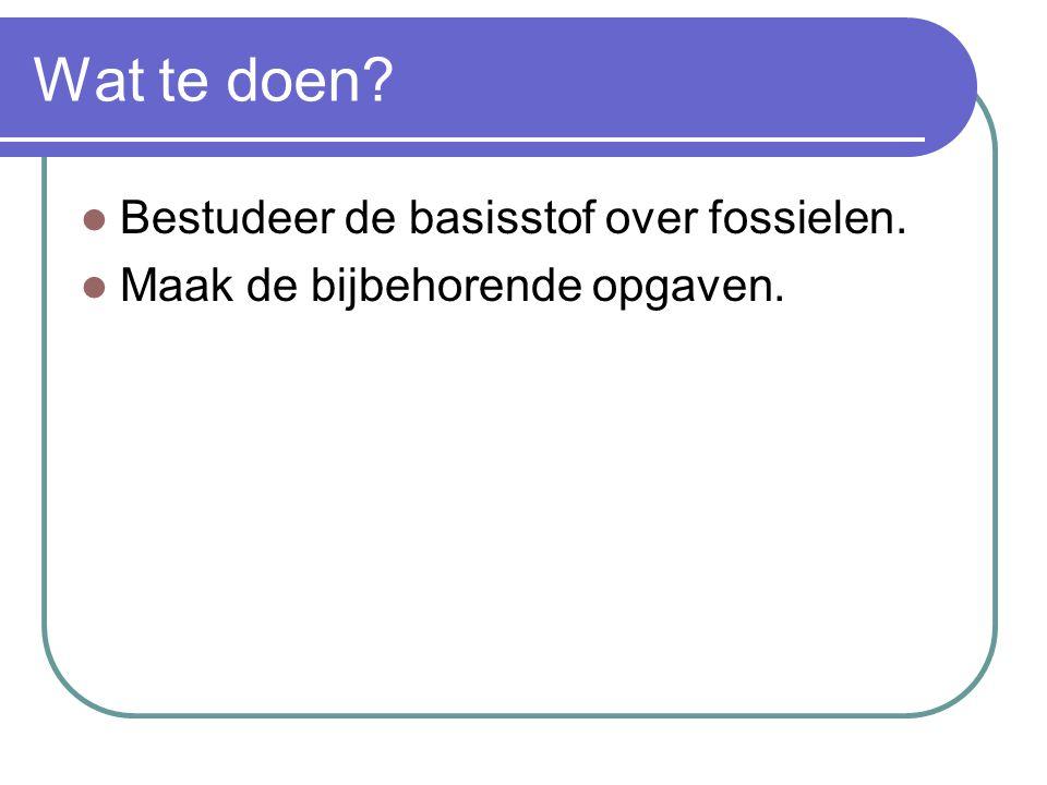 Wat te doen Bestudeer de basisstof over fossielen.