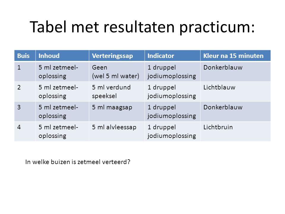Tabel met resultaten practicum: