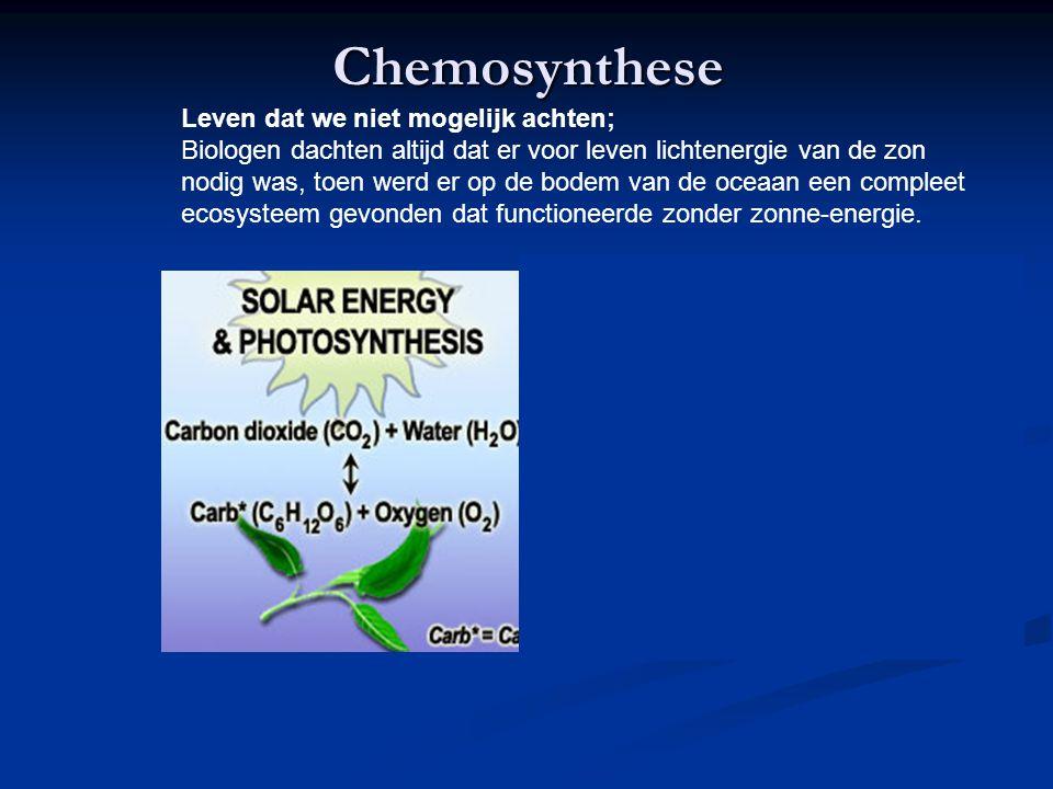 Chemosynthese Leven dat we niet mogelijk achten;