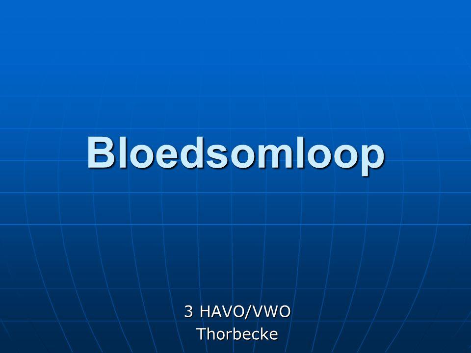 Bloedsomloop 3 HAVO/VWO Thorbecke