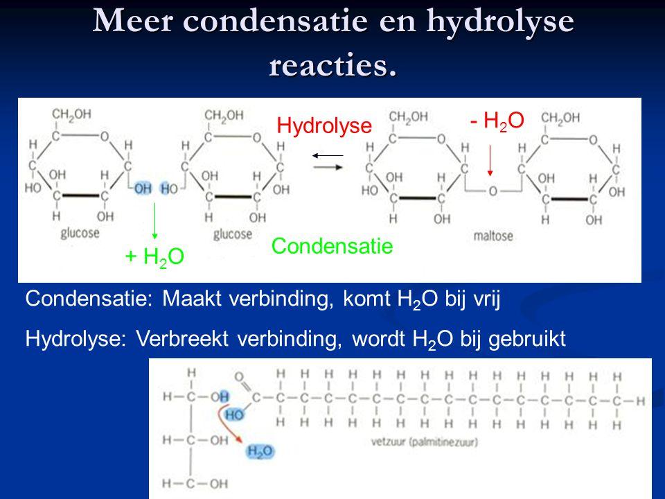 Meer condensatie en hydrolyse reacties.