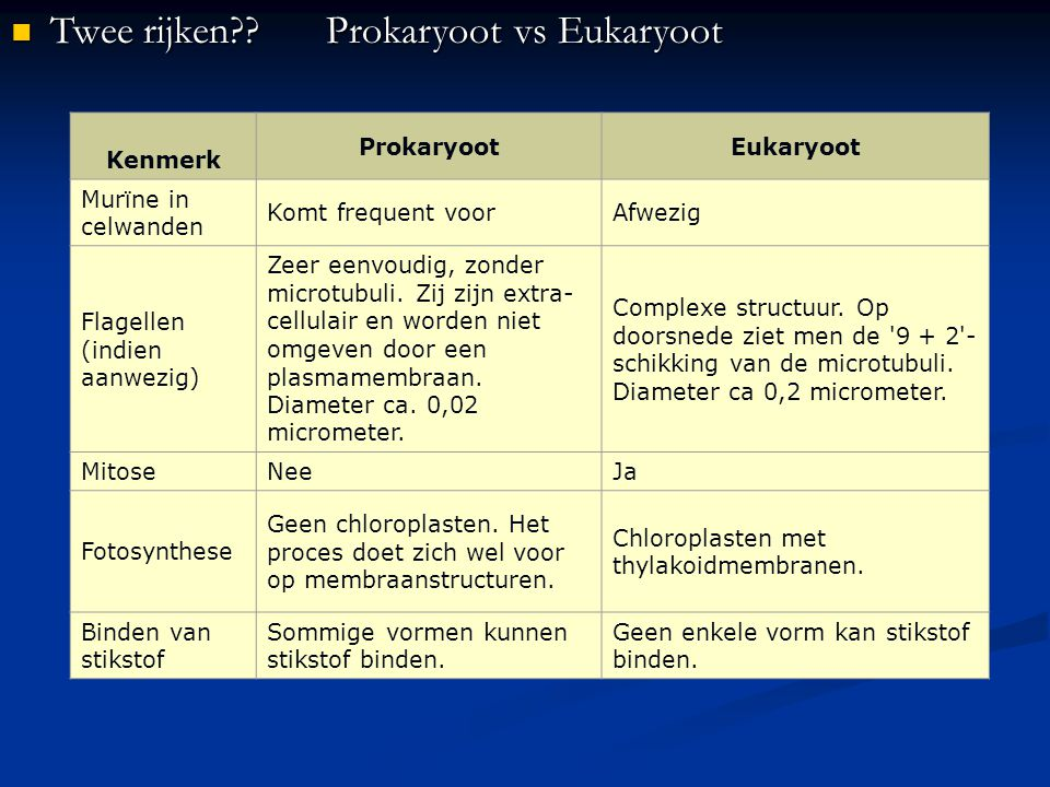 Twee rijken Prokaryoot vs Eukaryoot