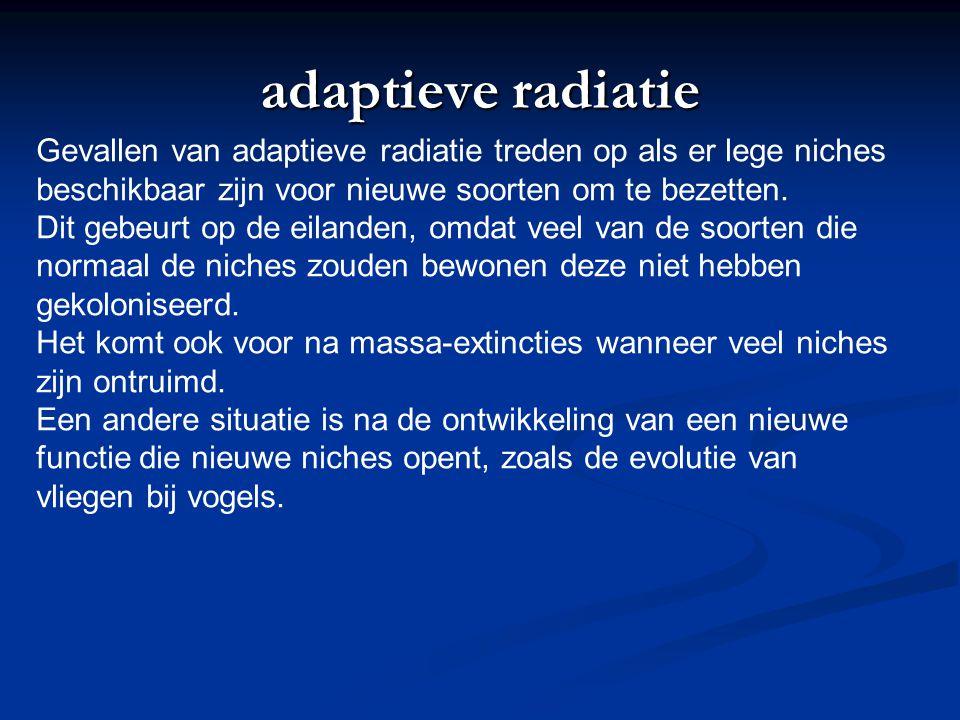 adaptieve radiatie Gevallen van adaptieve radiatie treden op als er lege niches. beschikbaar zijn voor nieuwe soorten om te bezetten.