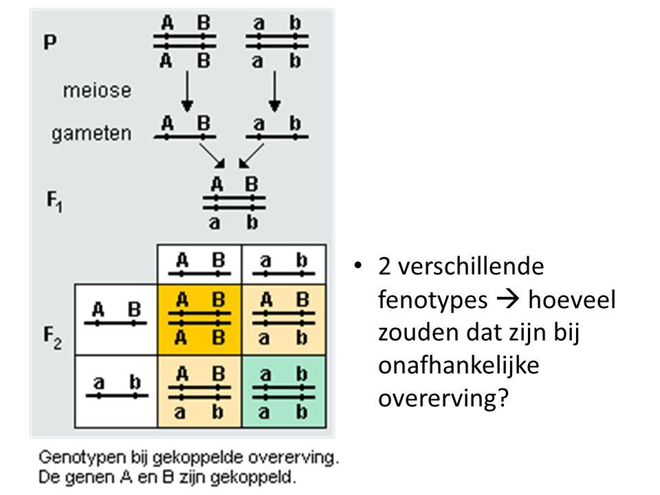2 verschillende fenotypes  hoeveel zouden dat zijn bij onafhankelijke overerving