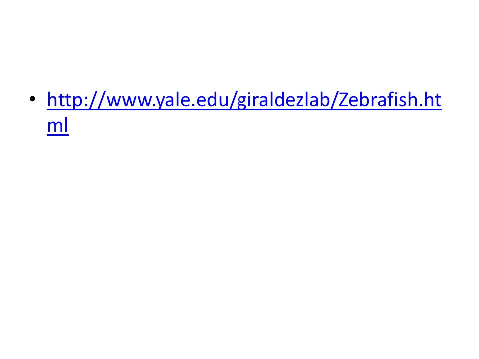 http://www.yale.edu/giraldezlab/Zebrafish.html