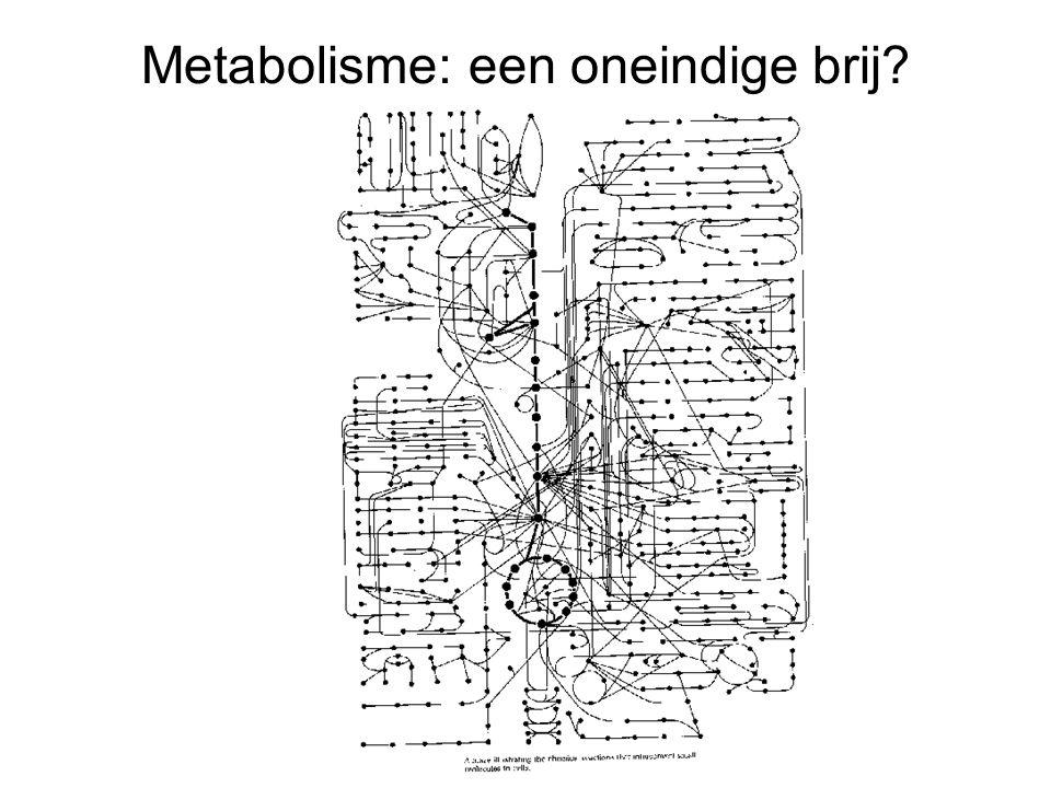 Metabolisme: een oneindige brij