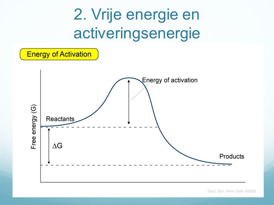 2. Vrije energie en activeringsenergie