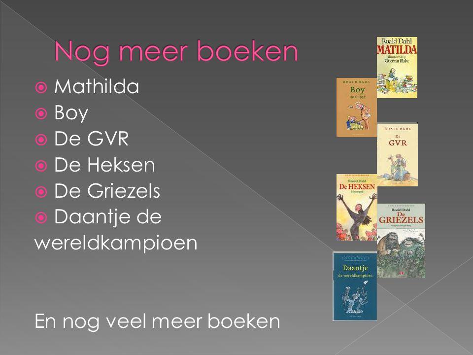 Nog meer boeken Mathilda Boy De GVR De Heksen De Griezels Daantje de