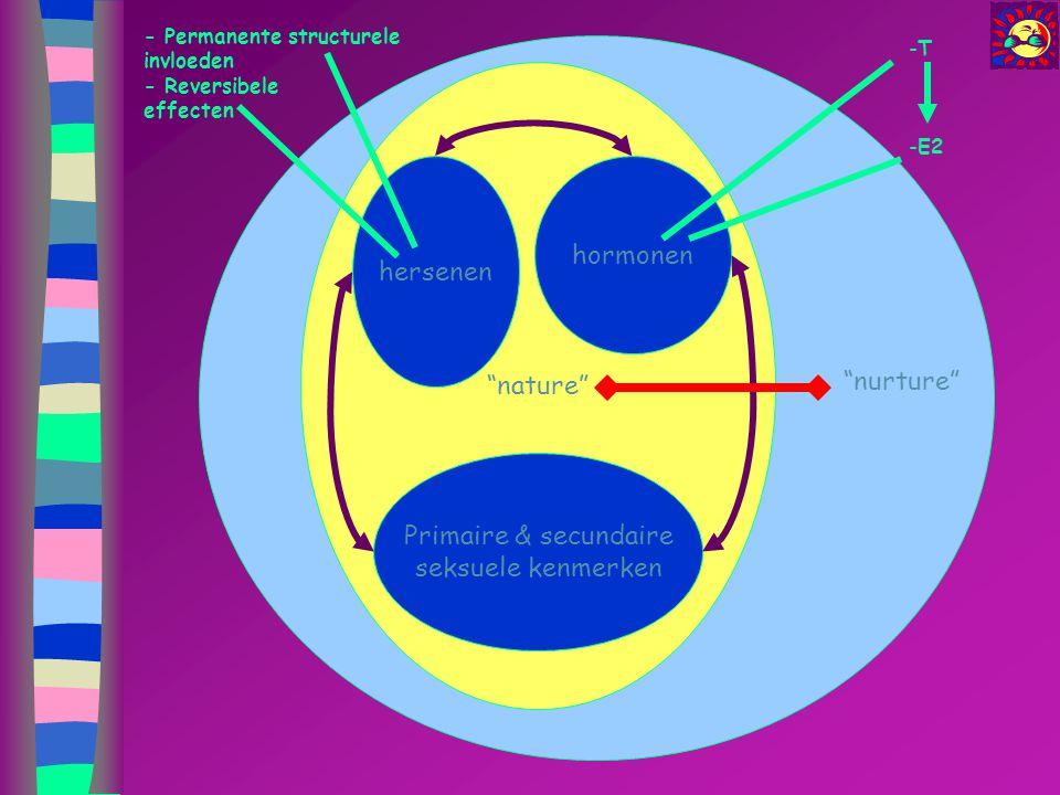 hormonen hersenen nature nurture Primaire & secundaire