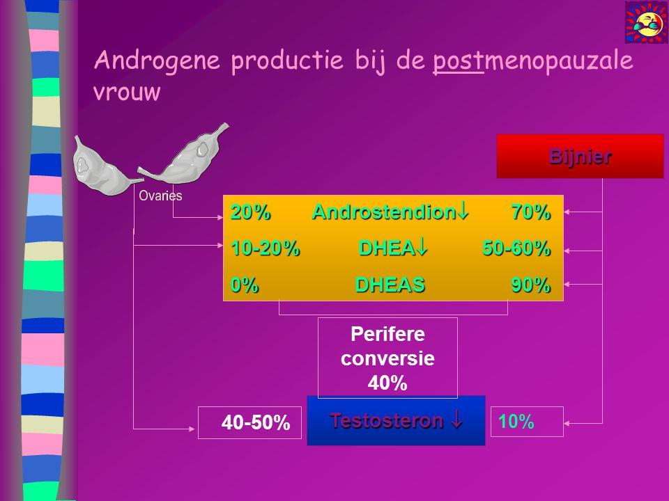 Androgene productie bij de postmenopauzale vrouw