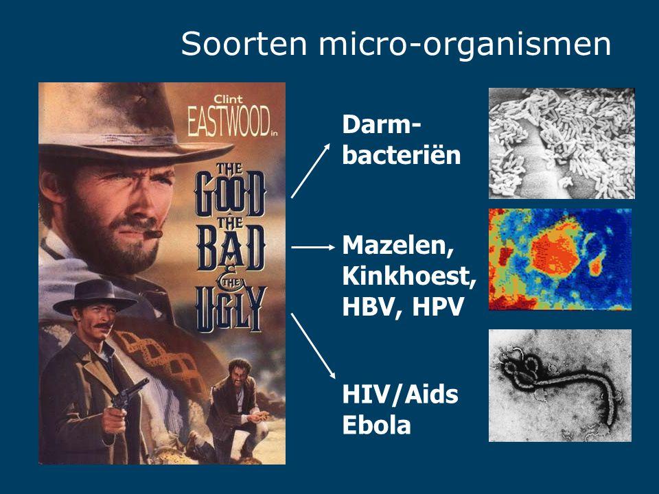 Soorten micro-organismen