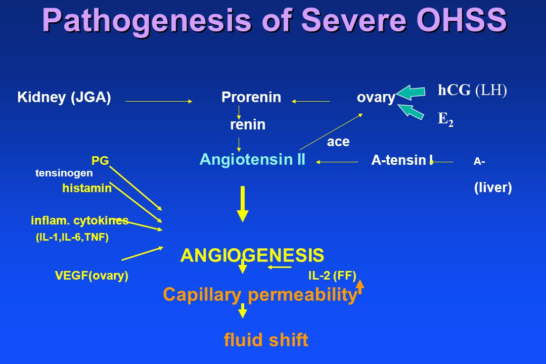 Pathogenesis of Severe OHSS