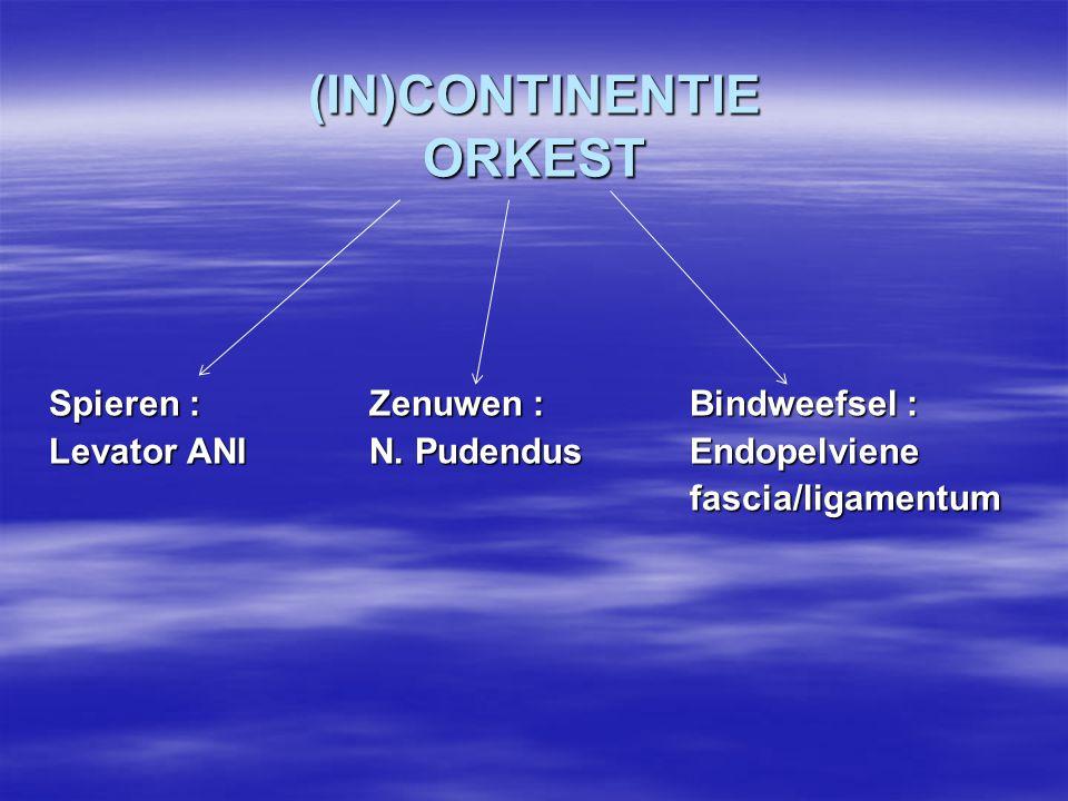 (IN)CONTINENTIE ORKEST