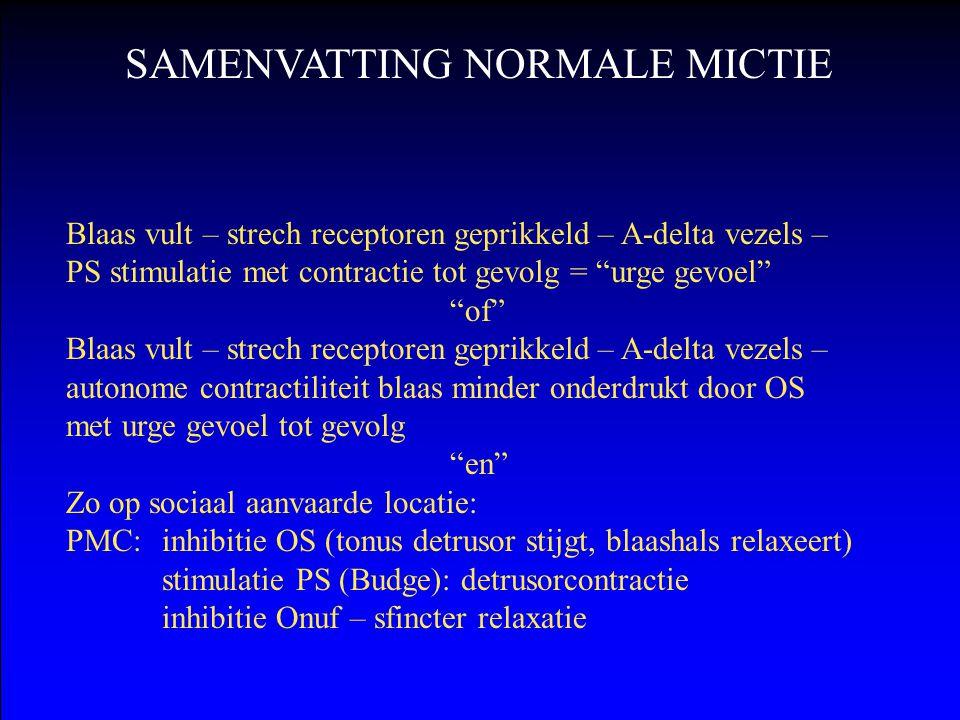 SAMENVATTING NORMALE MICTIE