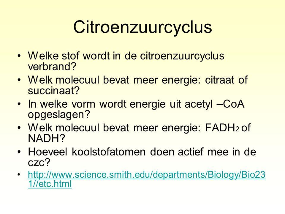 Citroenzuurcyclus Welke stof wordt in de citroenzuurcyclus verbrand