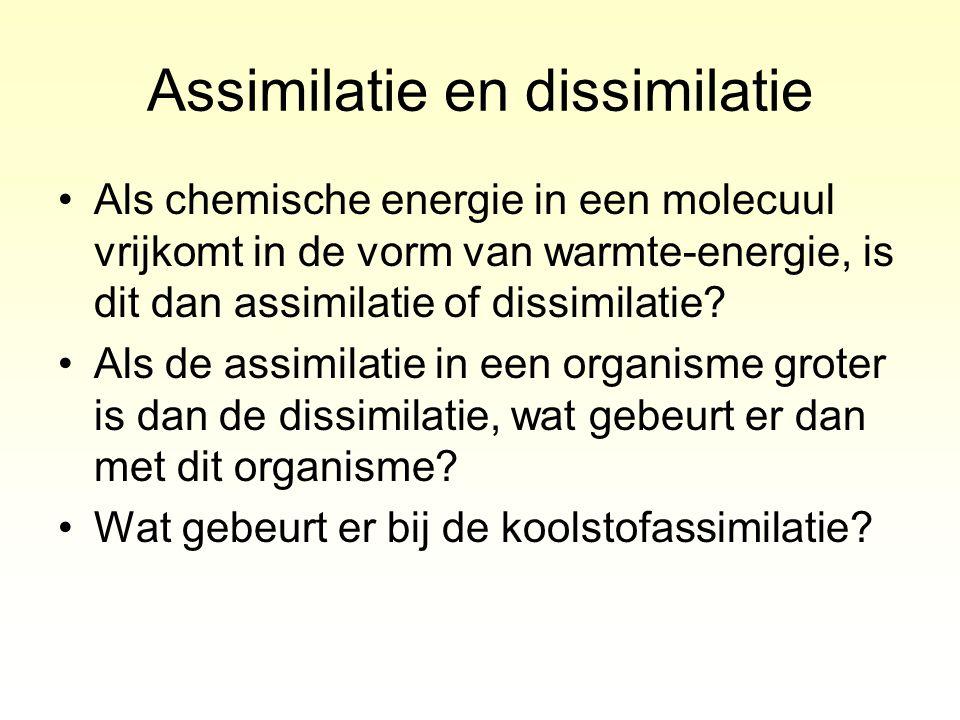 Assimilatie en dissimilatie