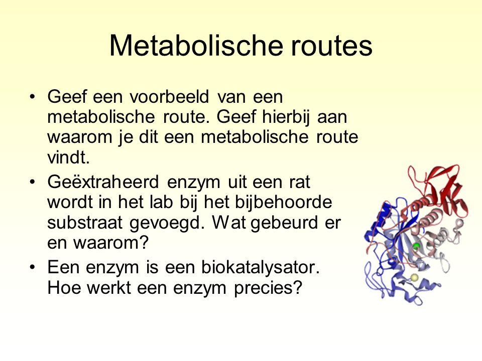 Metabolische routes Geef een voorbeeld van een metabolische route. Geef hierbij aan waarom je dit een metabolische route vindt.