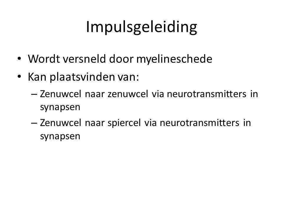 Impulsgeleiding Wordt versneld door myelineschede
