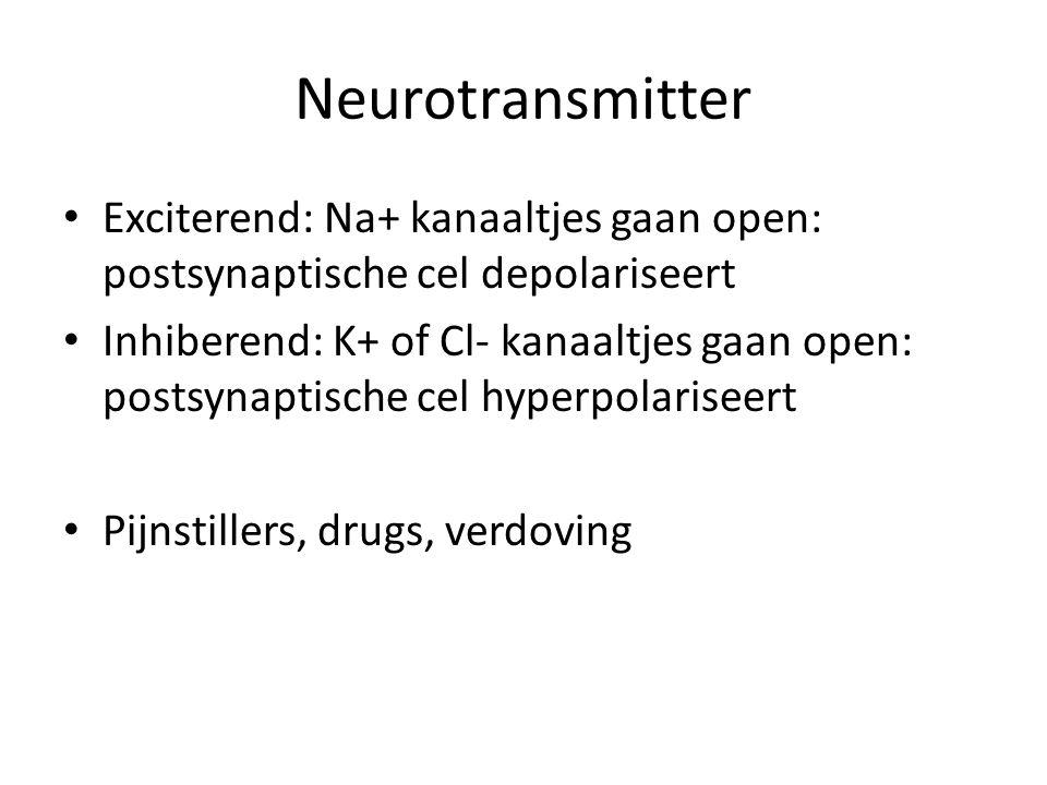 Neurotransmitter Exciterend: Na+ kanaaltjes gaan open: postsynaptische cel depolariseert.