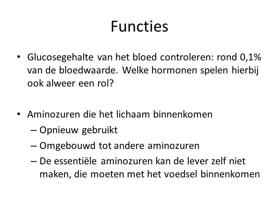 Functies Glucosegehalte van het bloed controleren: rond 0,1% van de bloedwaarde. Welke hormonen spelen hierbij ook alweer een rol