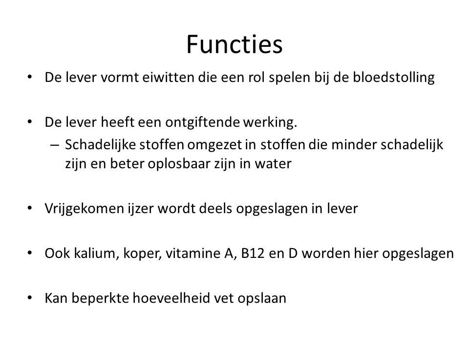 Functies De lever vormt eiwitten die een rol spelen bij de bloedstolling. De lever heeft een ontgiftende werking.