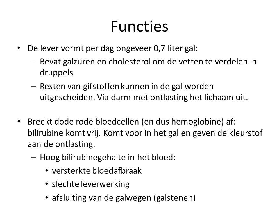 Functies De lever vormt per dag ongeveer 0,7 liter gal: