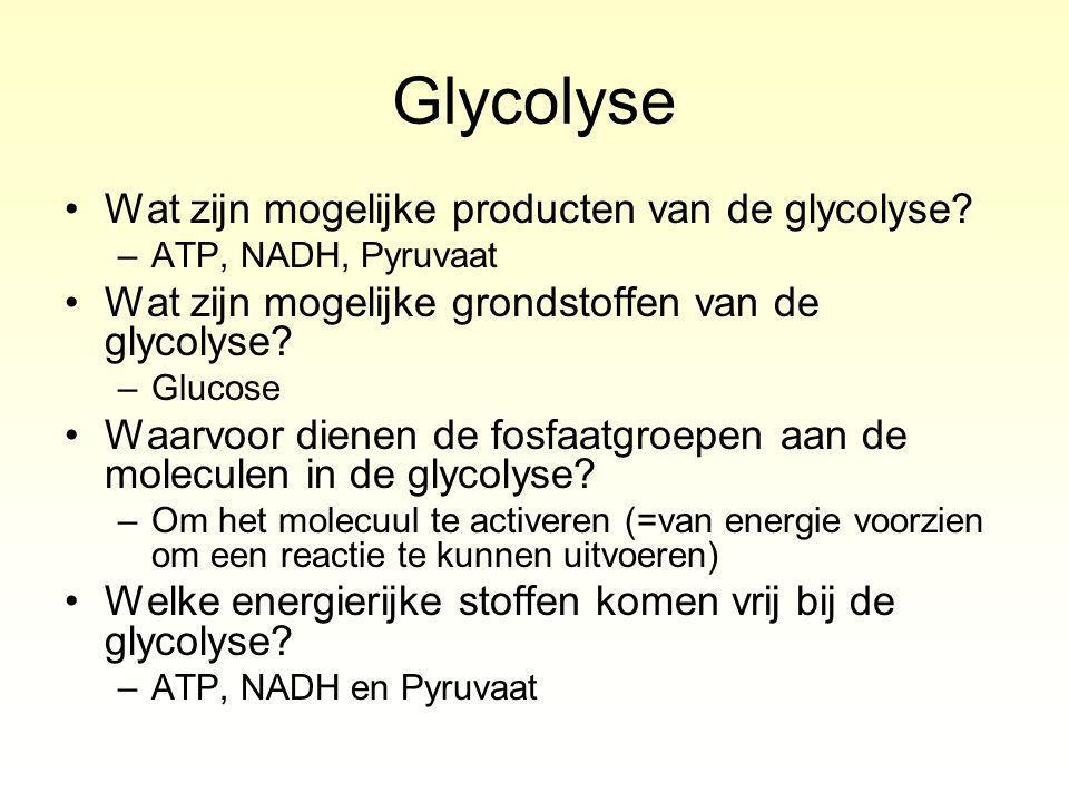 Glycolyse Wat zijn mogelijke producten van de glycolyse