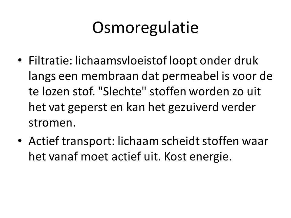 Osmoregulatie