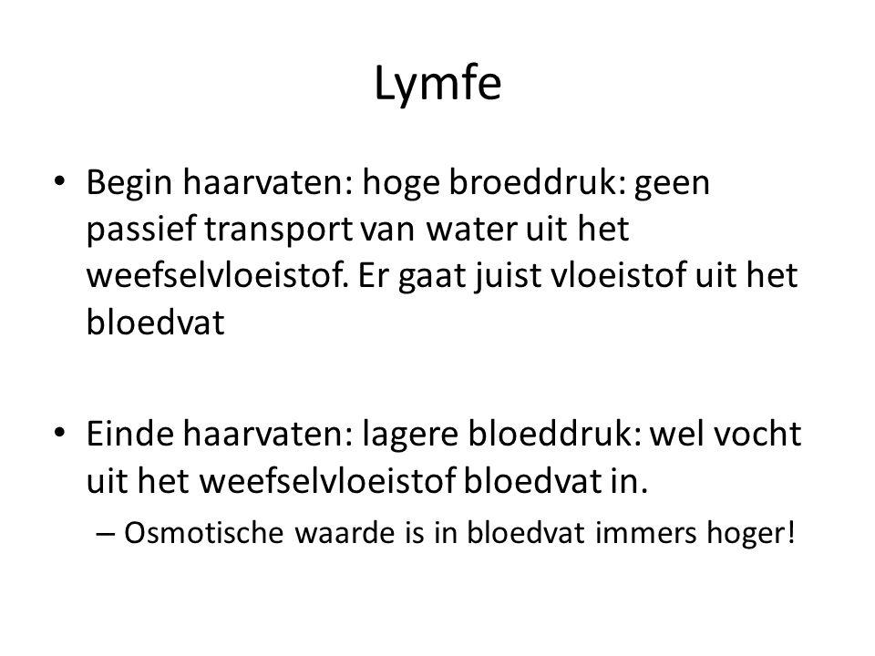 Lymfe Begin haarvaten: hoge broeddruk: geen passief transport van water uit het weefselvloeistof. Er gaat juist vloeistof uit het bloedvat.