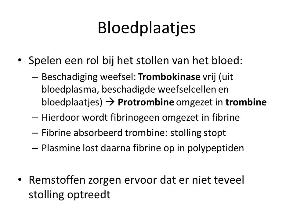 Bloedplaatjes Spelen een rol bij het stollen van het bloed: